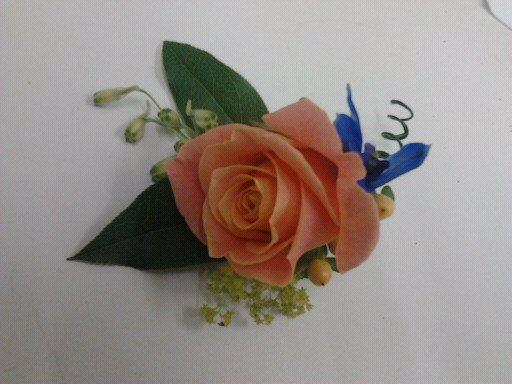 Peach /coral rose Button Hole 1