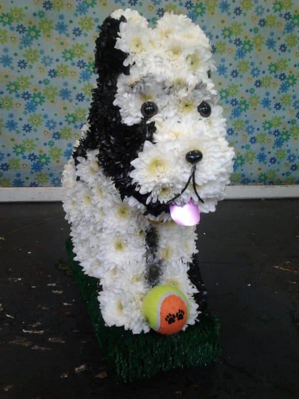 3D Dog 1