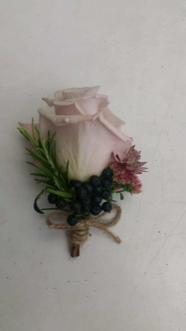 Button Hole Rose. 1