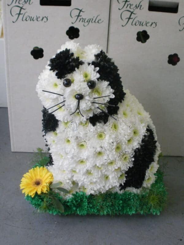 3D Floral Cat Arrangement 1