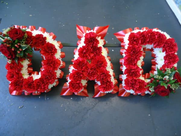 DAD frame with Red Carnations 1