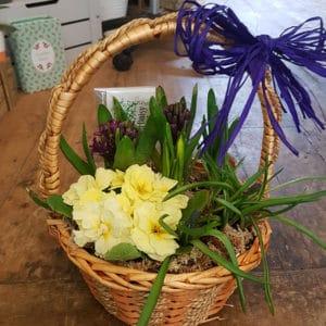 Flower Shop 17
