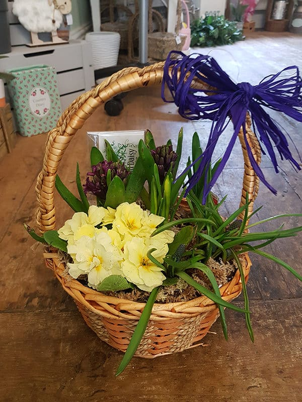 Spring Basket 1
