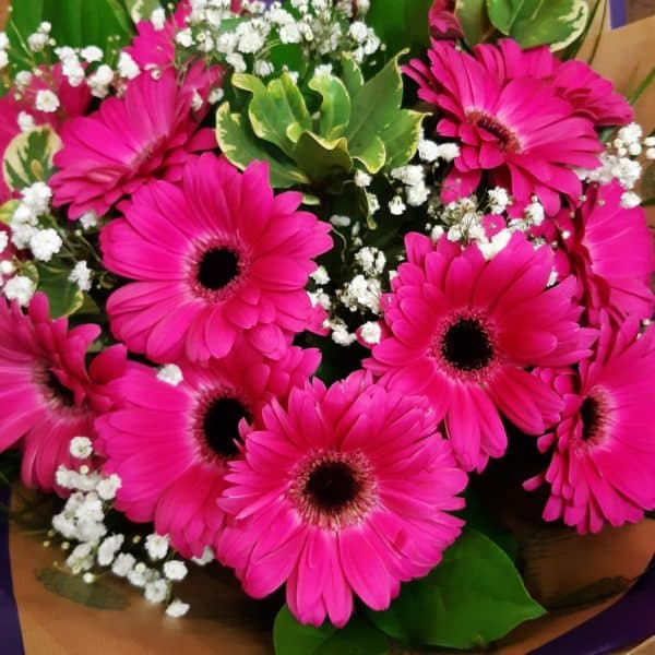 Gerbera Bouquet 1