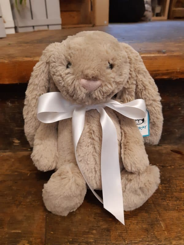 Cute fluffy bunny 1